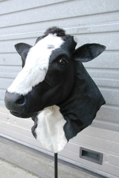 Cow`s head costume made for a ´Bolletje` commercial